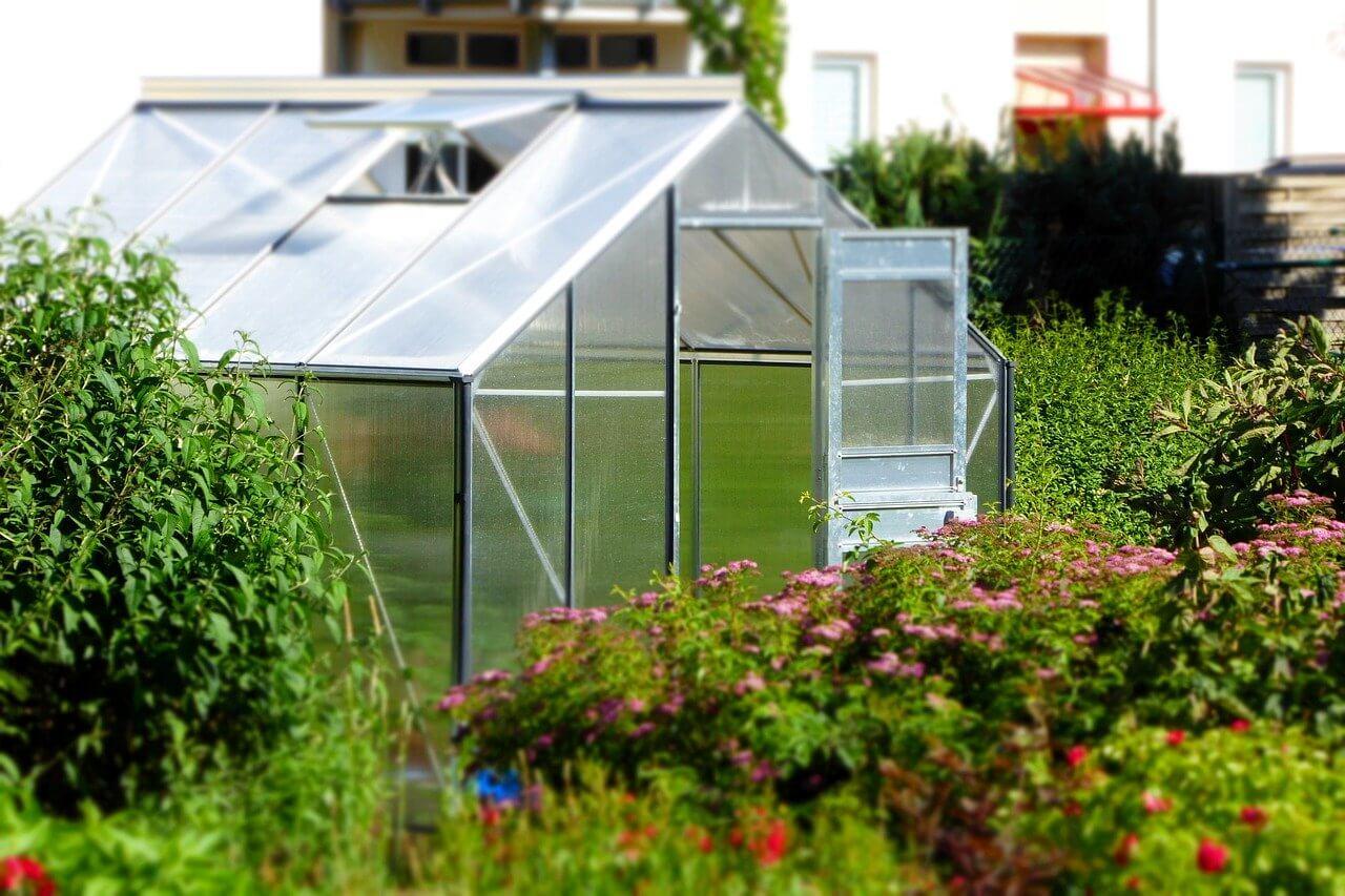 photo serre de jardin