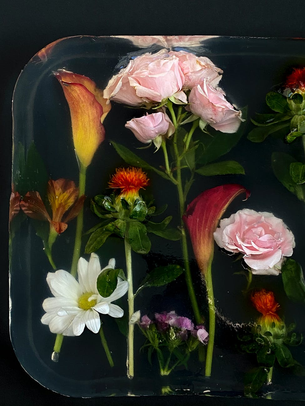 various colorful flowers in plastic container with water