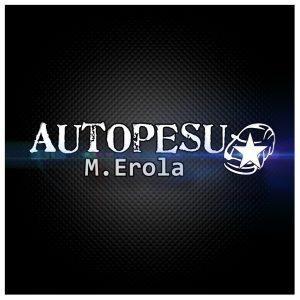 Autopesu M.Erola logo