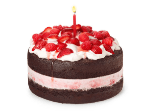 berry ice cream birthday cake