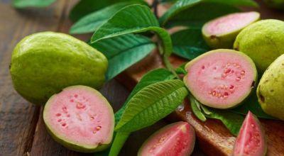 beneficios-de-la-fruta-de-guayaba-usos-sorprendentes-hojas-de-guayaba