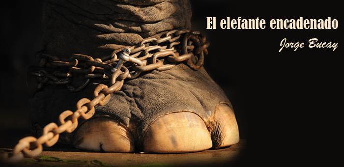 El elefante encadenado creencias limitantes for El elefante encadenado