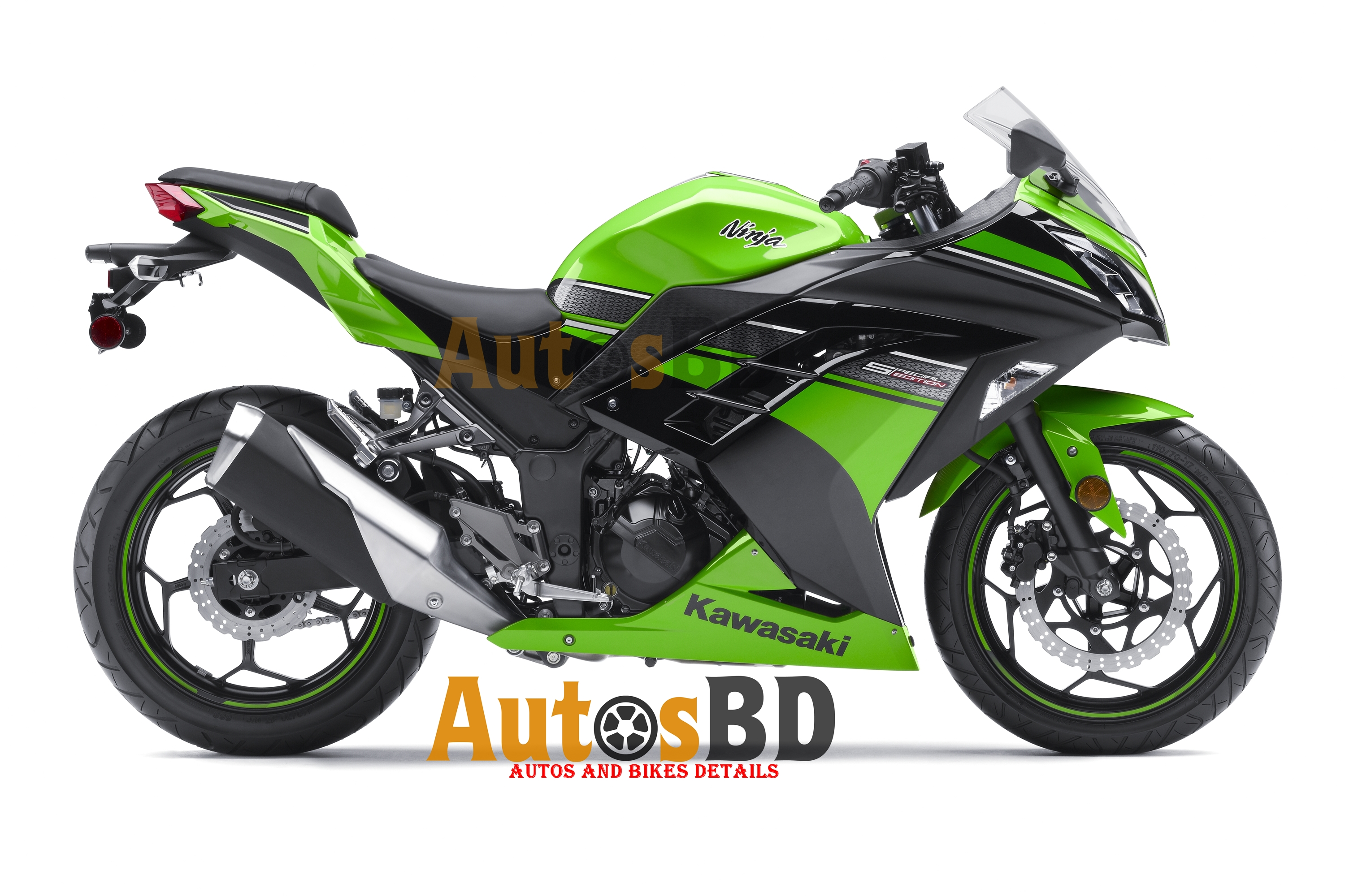 Kawasaki Ninja 300 Specification