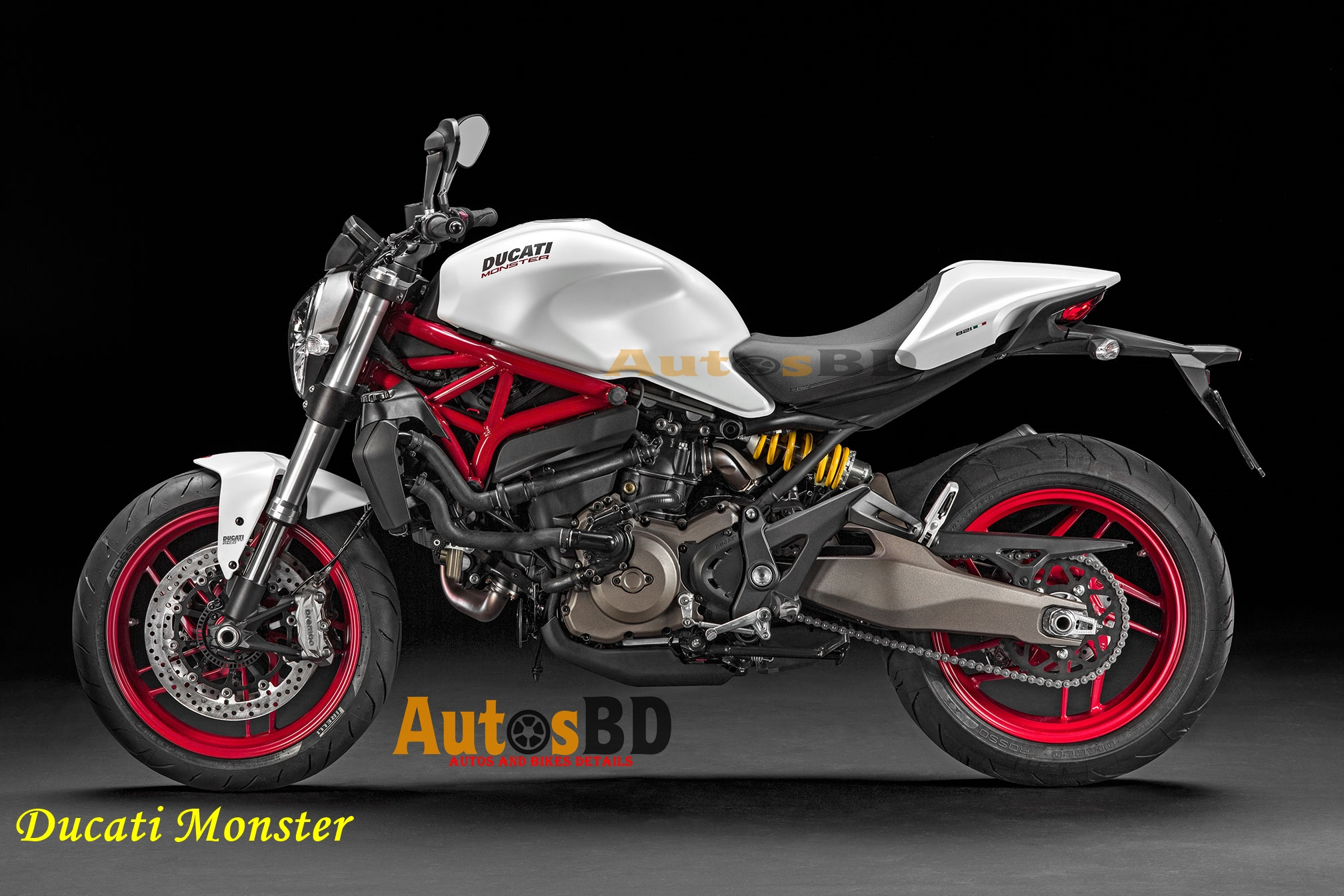 Ducati Monster Motorcycle Specification
