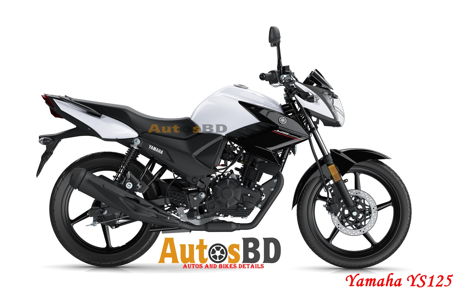Yamaha YS125 Motorcycle Price in India