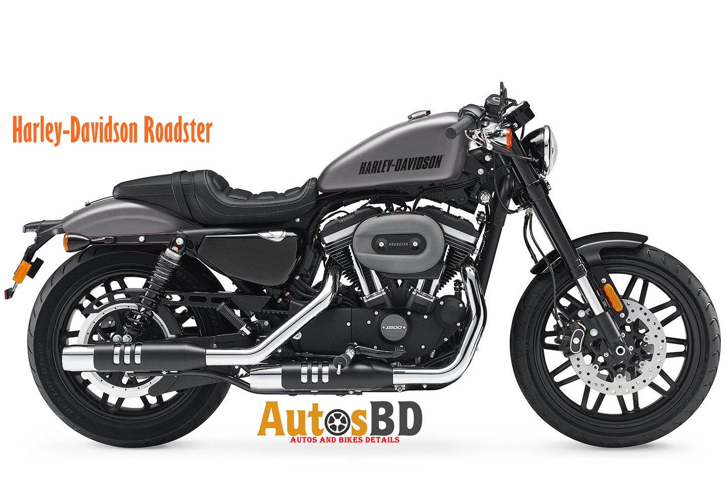 Harley-Davidson Roadster Specification