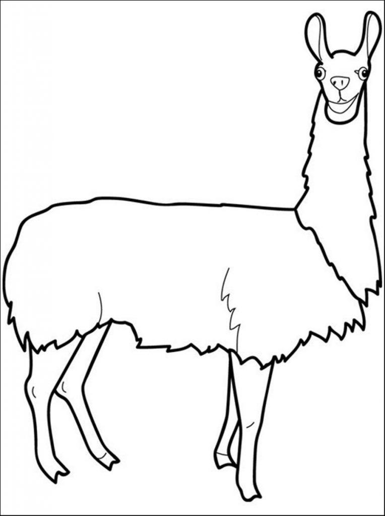 Coloriage Lama gratuit à imprimer et colorier