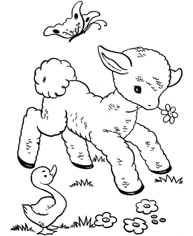 Coloriage bébé animaux gratuit à imprimer et colorier