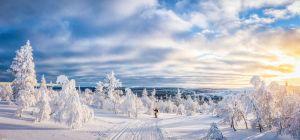 Talvinen idylli Lapista
