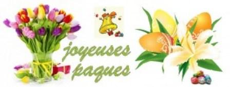 iles fleuries-3