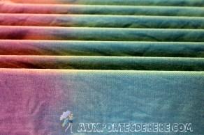 bicolore-bleu-violet