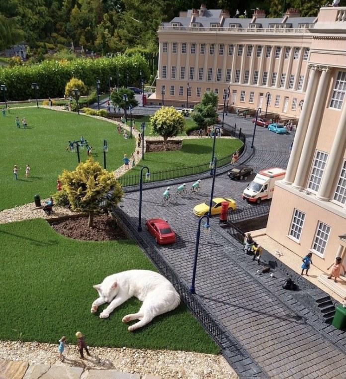 Animals In Miniature Park