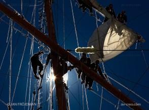 Helsinki_1111-1 (Tall Ships Rases 2013)