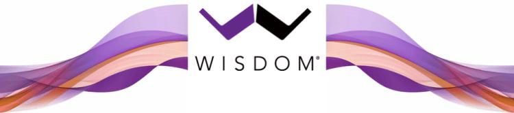Wisdom Audio Logo with Splash