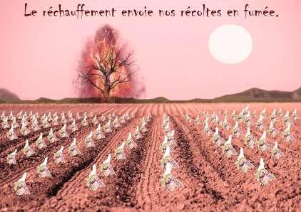 Bayot Jean-Christophe 4TTR