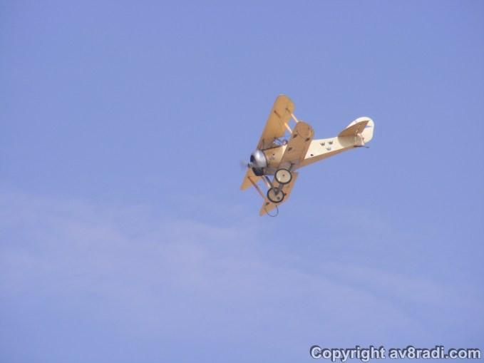 A majestic WW1 bird shows off her manouverability