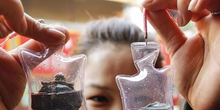 """Stoppen der """"Glücksbringer""""-Tierquälerei in China"""