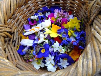 spring-flowers02