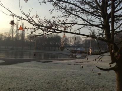 tree-lake