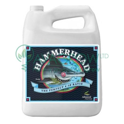 Hammerhead 4L