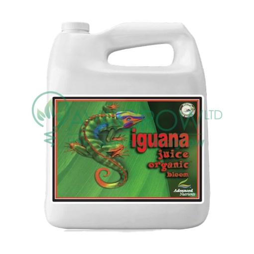 Iguana Juice Bloom 4L