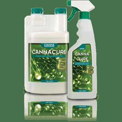 Plant Hygiene