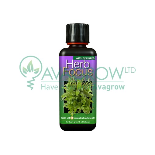 Herb Focus 100ML