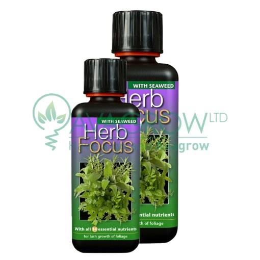 Herb Focus Family