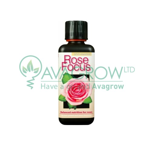 Rose Focus 100ML