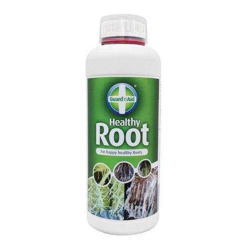 Healthy Root