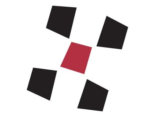 DriveTeam, Inc. Icon