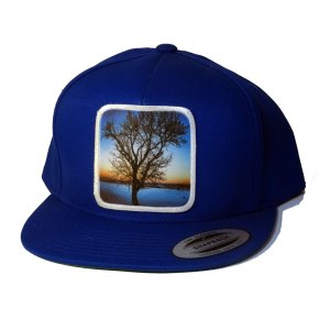 AVALON7 Soulstice Tree Snapback Hat
