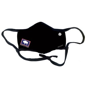 wyoming flag bison jackson hole facemask