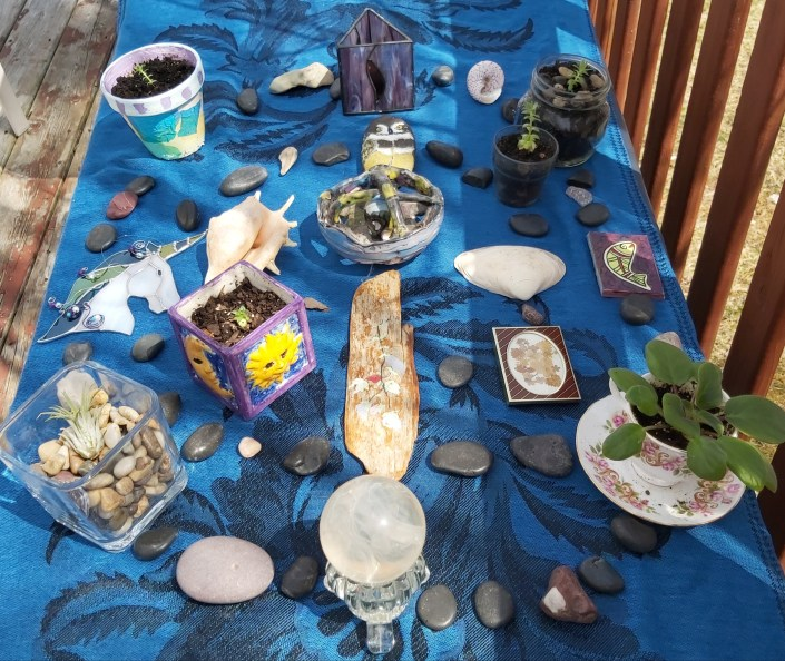 a mandala from living items on an outdoor table