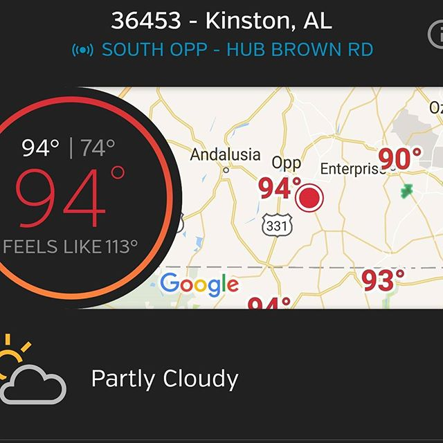 94, feels like 113. And it's not even a dry heat - the word basting comes to mind! .