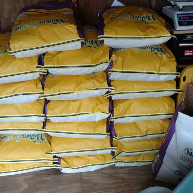 Boy, you never know where life will lead you. Never dreamed we'd be buying chicken feed by the half ton. 🤔😮 This non-GMO, non-soy feed will last just under a month, at current chicken numbers, to provide supplemental feed to our pasture raised meat and egg layers. But we'll be adding another 100 meat chickens soon!