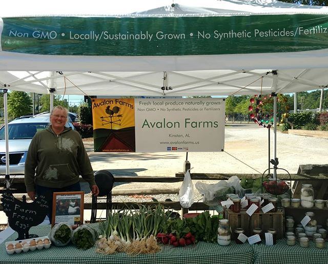 All setup at @dothan.nurseries! We've got spinich, green garlic, green onions, Senposai, radishes, pasture raised whole chickens and eggs, herb salts, brine and our tasty jams and other goodies. We're here until 1:00 - stop by and say hi! .