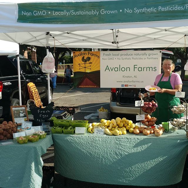 Morning! Beautiful morning here at Poplar Head farmers market in downtown Dothan.  Come have a sample of Sassy Apricot Jam, our version of a pepper jelly. Excellent on grilled meat!