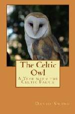 The Celtic Owl