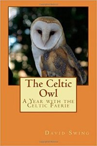 The Celtic Owl: A Year with the Celtic Faerie by David Swing