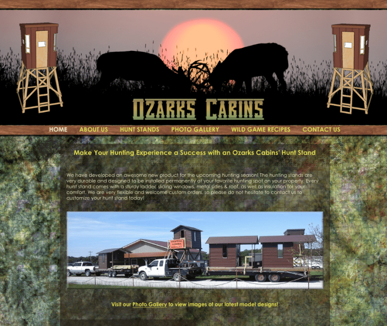 Avalon Web Designs | Professional Website Design & Marketing Services for OzarksCabins.com