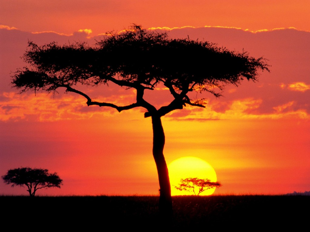 Colour inspiration  African sunsets  Avance Creative Visions