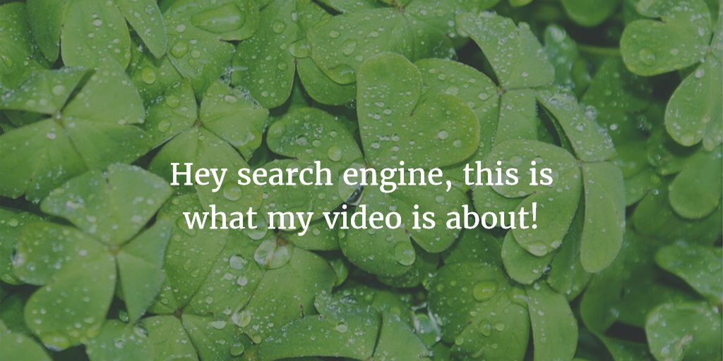 Publish video transcripts to please audience and search engines