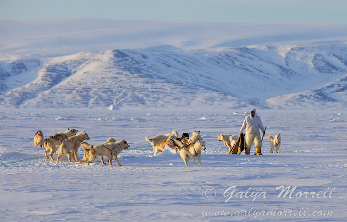 Arctic Without Borders