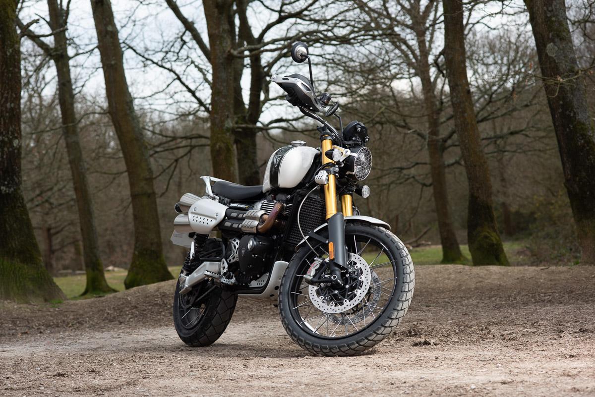 Awhite Triumph Scrambler 1200 in the woods