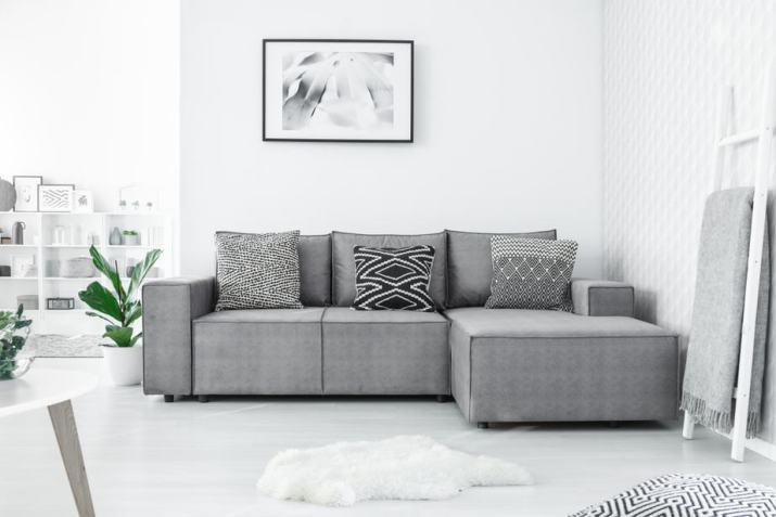 Fancy Grey Living Room