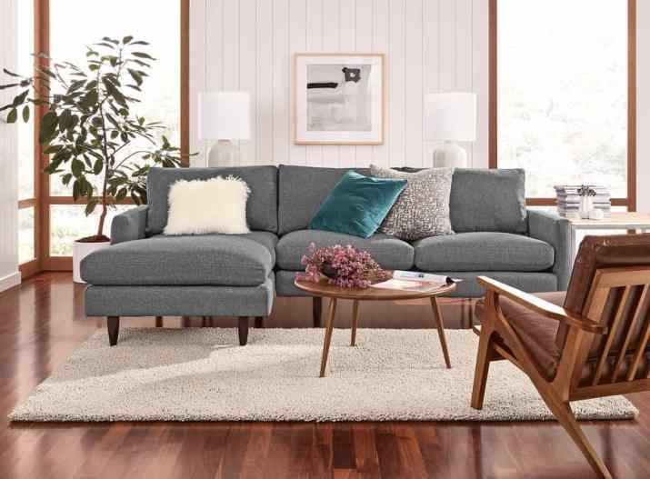 Simple Mid Century Living Room Model