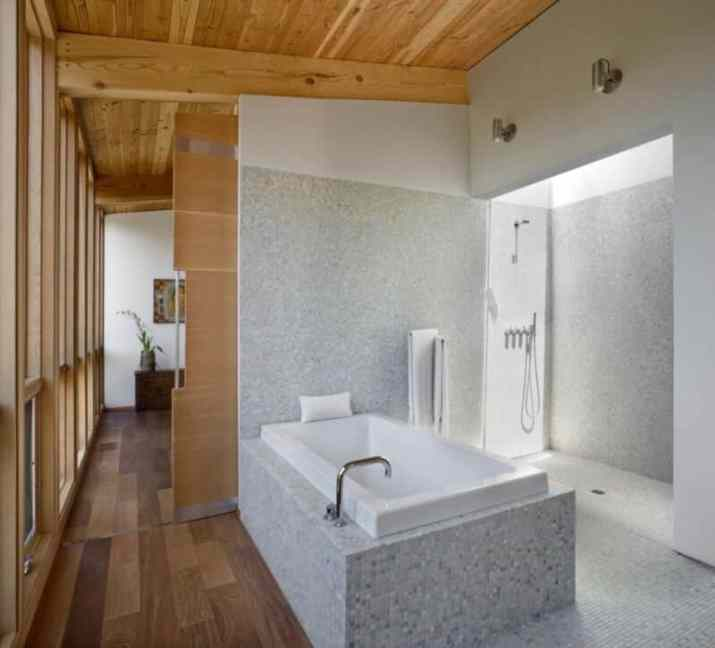 Wood Ceiling Ideas for Bathroom for small room