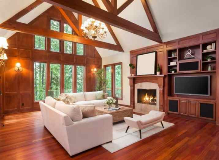 traditional Vaulted Ceiling Living Room Ideas