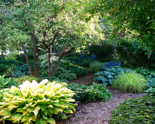 Shady Garden greens